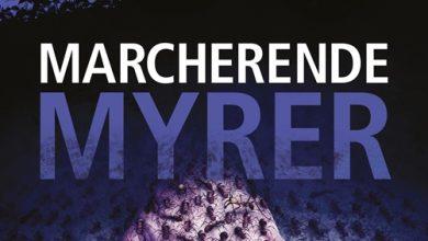 Photo of Ny bog fra Dennis Jürgensen – Marcherende myrer