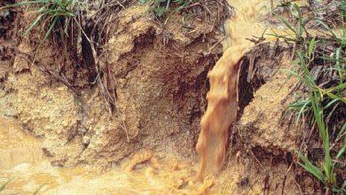 Photo of Nyt forskningsprojekt skal gøre oprensning af jordforurening billigere