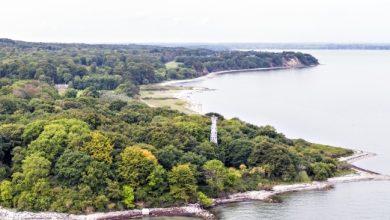 Photo of Treldeskovene er naturkanon