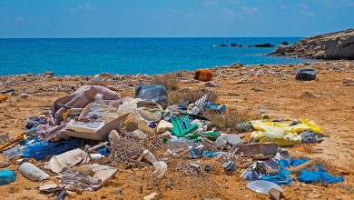 Photo of Nyt dansk forskningscenter skal komme plastikproblemet til livs