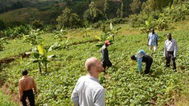 Photo of Anonym donor giver en million til iværksætter-landbrug i Burundi