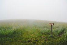 Photo of Nye skilte viser vej til naturen